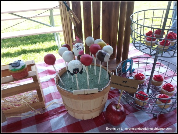 Illinois Cake pops. Birthday Decor, Events by L