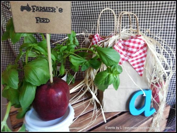 Barnyard Birthday Events by L Decor