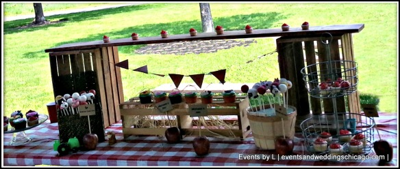 Sweets Table, Bunting, Events by L Barnyard Birthday